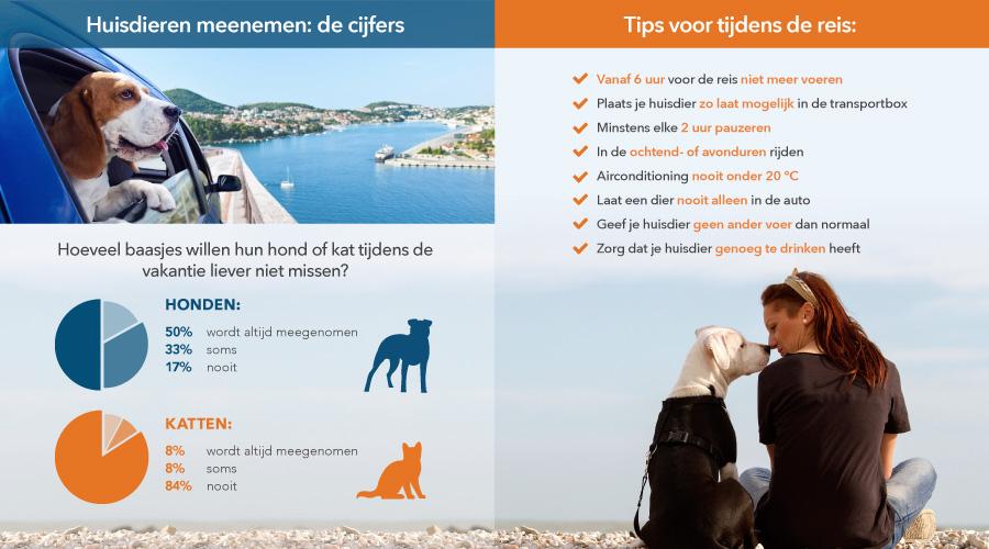 Infographic: Onderweg met huisdieren
